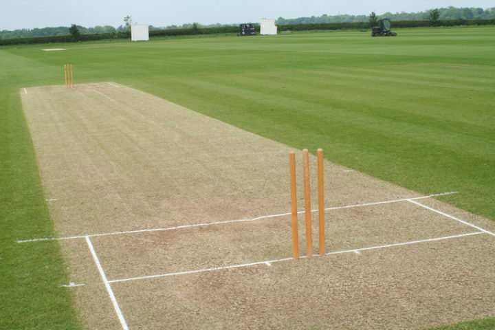 Types of Pitches in Cricket