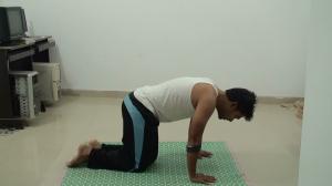Lean forward -Sirsasana