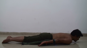 Chaturanga Dandasana - For Beginners