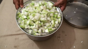 Bottle Gourd making
